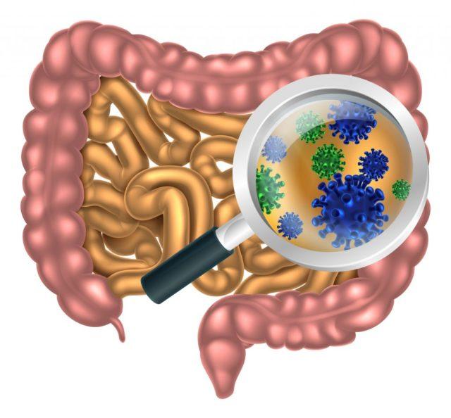 Инфекционные заболевания заразны, ребенок может получить возбудителя воздушно-капельным, воздушно-пылевым, контактным путем