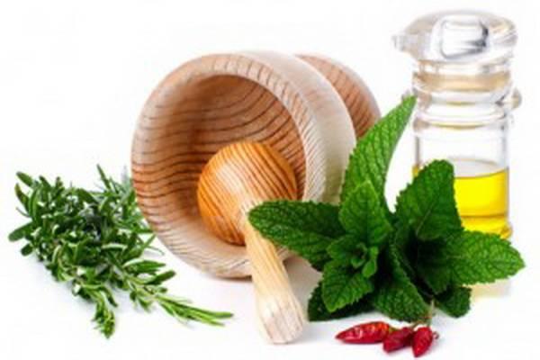 Основными лекарственными растениями, применяемые при лечении спондилеза являются: листья березы, ромашка, хвоя, лаванда, каштан конский