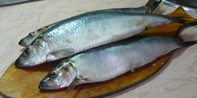 При лечебной диете можно кушать рыбу, но только нежирных сортов